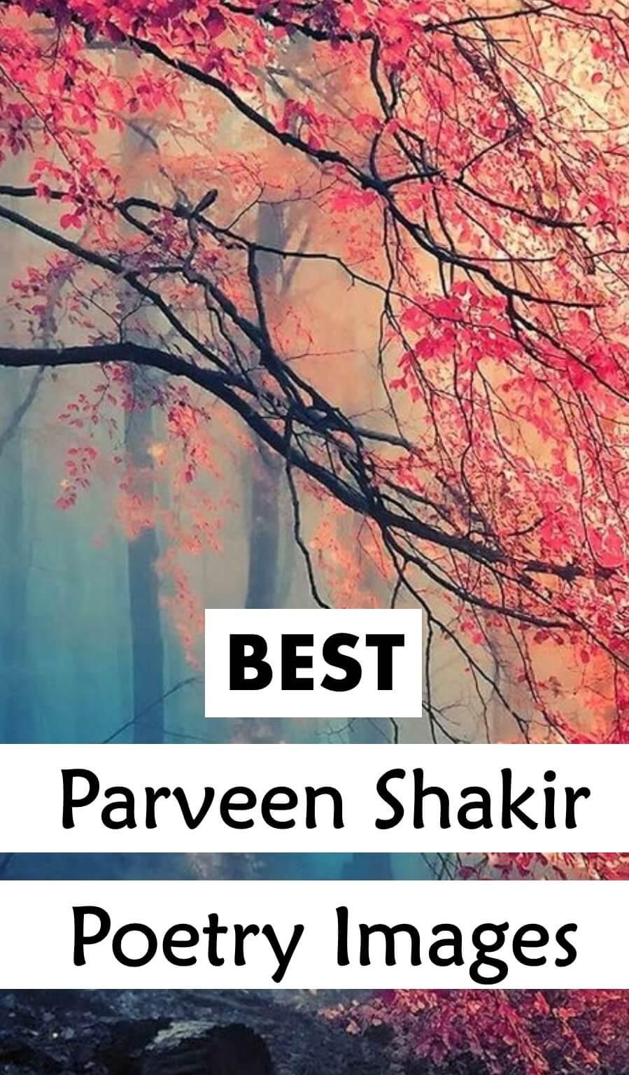 Pin By Huma Parveen On Shayeri: Best Shayari Of A Great Poetess